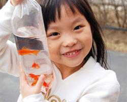 leak-proof-aquarium-fish-bag